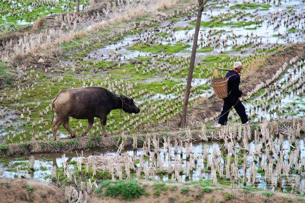 如今,很多农民进城务工,不再抱着锄头哭了,无疑,这是社会的进步.