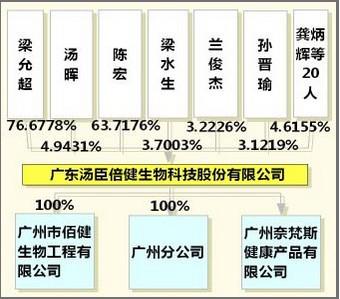 股权结构图